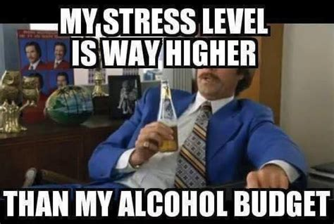Funny Stress Memes - funny stress memes stress best of the funny meme