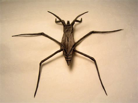 Insect Origami - insect origami the awesomer
