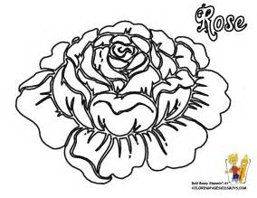 rose flowers coloring pages free yescoloring rose