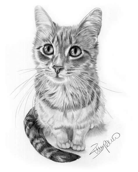 Cat Pencil cat pencil drawing by wendy zumpano www pencilportraitcards pencil portraits of cats