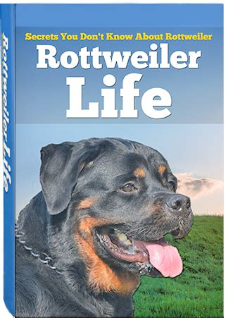 rottweiler books rottweiler rottweiler rottweiler book rottweiler puppy