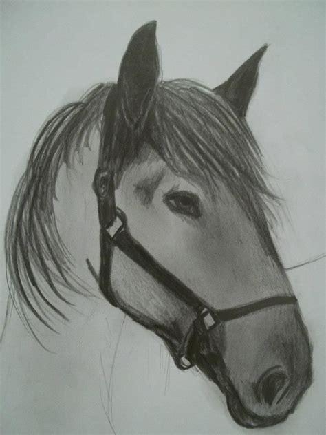caballo a lapiz dibujos de animales 11 dibujos a l 225 piz de caballos dibujos a lapiz