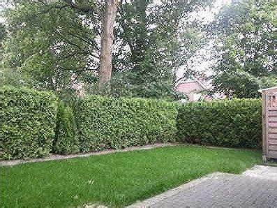 Garten Mieten Delmenhorst by Haus Mieten In Delmenhorst