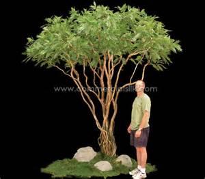 artificial acacia tree commercial silk int l
