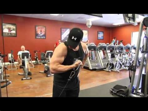 Standing Concentration Curl by Workout 101 Standing Cable Concentration Curl Youtube
