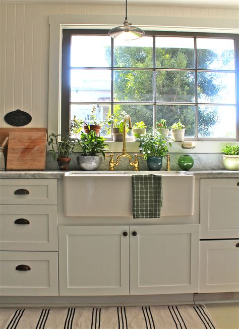 plants in the kitchen kitchen 101 creating healthier and greener kitchen