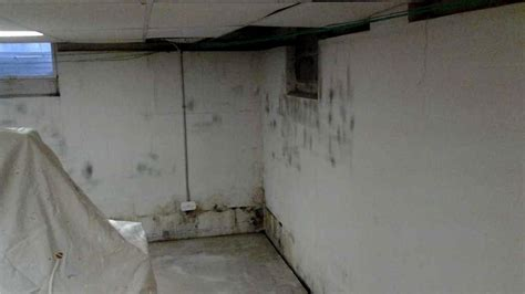 basement mold symptoms quality 1st basement systems basement waterproofing