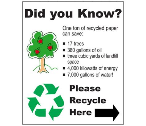 How Many Sheets Of Paper Does One Tree Make - recycling paper paper recycling