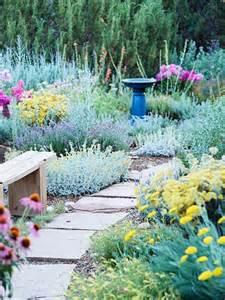 drought tolerant gardens k sarah designs