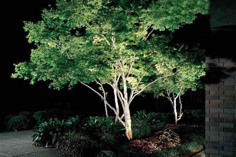 landscape lighting uplight trees landscape lighting in new jersey cross river design
