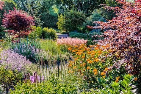 the backyard gardener kingsbrae garden