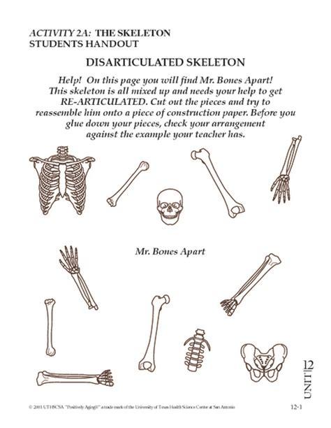 Skeletal System Worksheet by 28 Free Skeletal System Worksheets Skeleton Cut Out