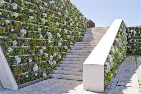 Vertical Wall Gardens Living Wall Decor Ideas Inspiration Guide Install