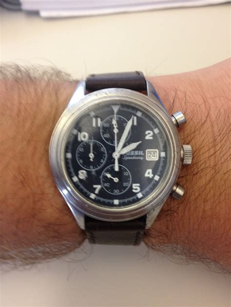 F Ssil Speedy A Happy Ending With A Fossil Speedway Fossil Collectors Club