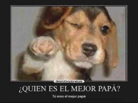 imagenes te amo papa papa te amo mama te amo youtube