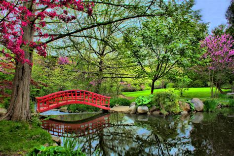 japanese garden bridge japanese garden at cranbrook red bridge 169 brian cal