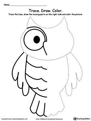 pattern thinkers test trace and draw missing lines to make an owl thinking