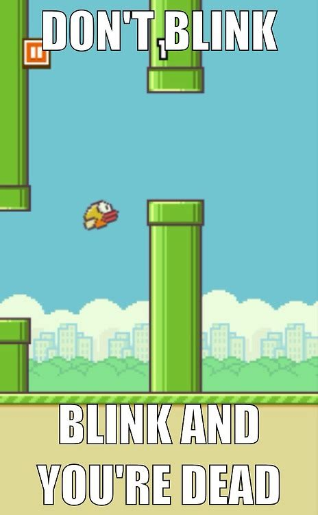 Flappy Bird Meme - funny bird quotes and sayings memes