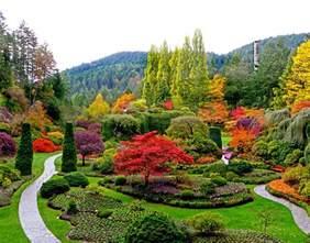 botanical garden markus ansara