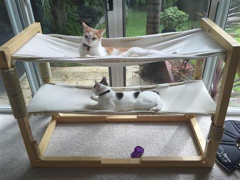 build bunk bed hammocks   cats