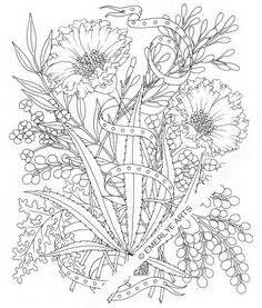 cannabis coloring book 1000 images about on cannabis ganja and