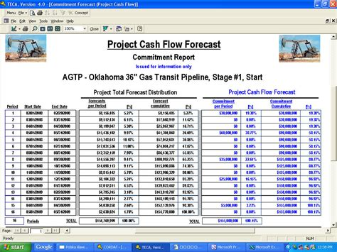 sle cash flow of a project project cash flow report tabular pictures