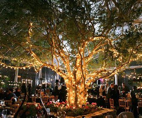 outside tree lighting ideas 25 best ideas about outdoor tree lighting on