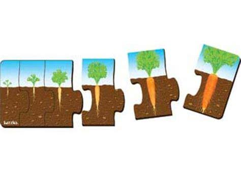 2 Set Woodem Puzzle Vegetanle And My Part garden farm