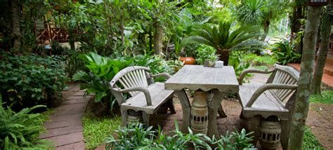 how to create a tropical backyard how to create your own tropical garden