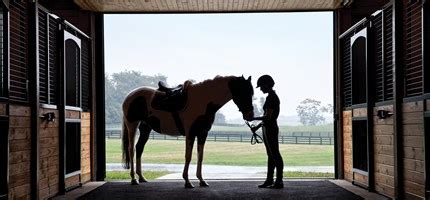 creature comforts horse long weekend virginia s horse and wine country virtuoso