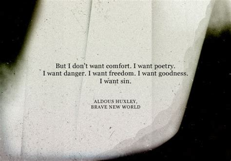 i need comfort but i don t want comfort i want poetry i want danger i