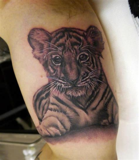 baby tiger tattoo the gallery for gt baby tiger drawing
