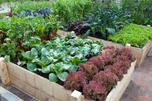 Gardening Vegetables 20 Aesthetic And Family Friendly Backyard Ideas