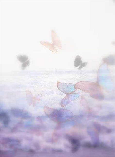 Streams Of Consciousness A Beautiful by 1000 Ideas About Butterfly Kisses On Gatos