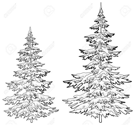 pine tree line drawing vector christmas trees under snow