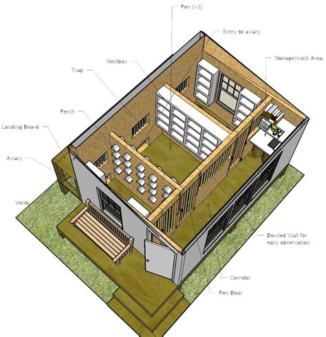 best 25 pigeon loft ideas on pigeon cage