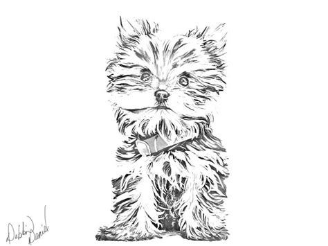yorkshire terrier tattoo designs yorkie sketch