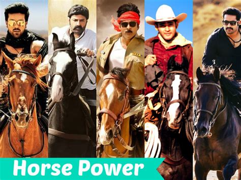 when horses are away celebs come out to play photos sowetan live check out tollywood stars love for horse riding filmibeat