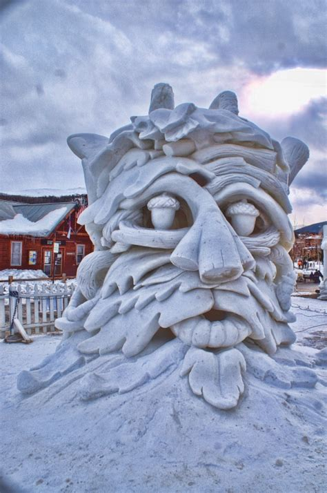icy architecture steals  show  breckenridge homes