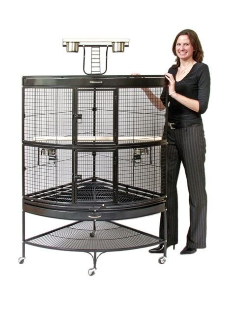 bird cages for parrots   My lovely birds:)   Pinterest