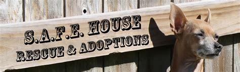 safe house dog rescue safe house rescue 28 images safe porch shelter eureka shelters the safe house
