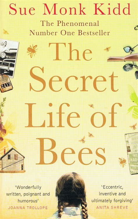 the bee book books book vs the secret of bees the motion pictures