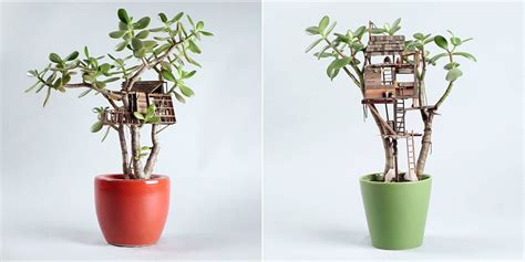 tiny plant tiny tree houses for houseplants adorable mini