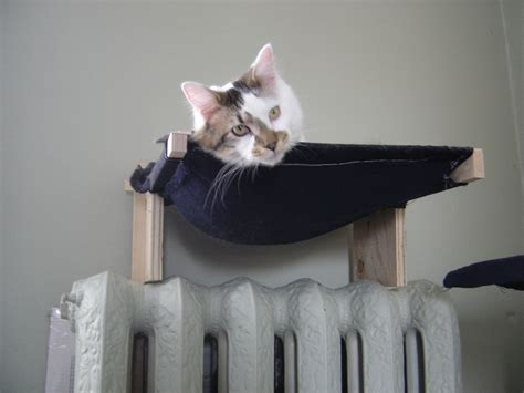 Make Cat Hammock diy cat wall hammock petdiys