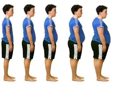 biodata maudy ayunda berat badan science media centre 187 blog archive obesity linked to