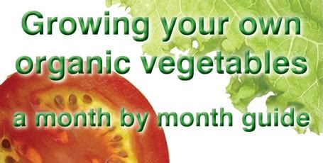 Grow Your Own Organic Fruit by Grow Your Own Organic Veg Healthy Essex