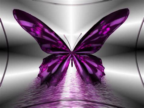 wallpaper free butterfly wallpapers hd desktop wallpapers free online butterfly