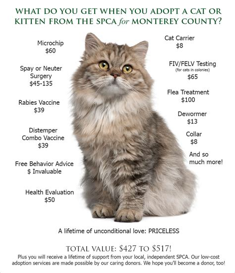 where can i bring my for adoption adoption value spca for monterey county