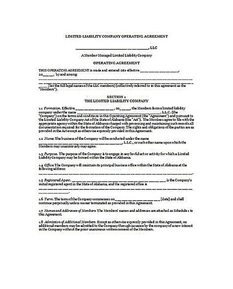 florida llc operating agreement template 23 llc operating agreement template