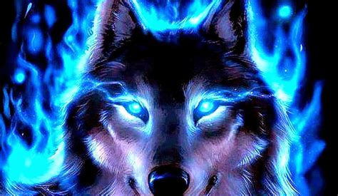 best wolf wallpaper wallpapersafari